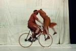 velos-acrobates_Charlotte-Kolly_Claire-Ruiz_TAITEUL_photo-Antoinette-CHAUDRON-31